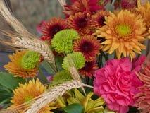 Fleurs d'automne Images stock
