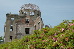 Fleurs d'Hiroshima Photographie stock libre de droits