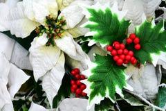 Fleurs d'hiver et feuilles rouges blanches, fond floral romantique Photo libre de droits