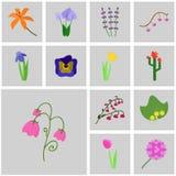 Fleurs d'icônes de vecteur Photos libres de droits