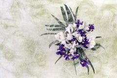 Fleurs d'iris images stock
