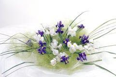 Fleurs d'iris photo libre de droits