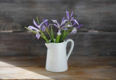 Fleurs d'iris dans la cruche blanche images stock