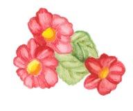 Fleurs d'isolement sur le blanc illustration stock