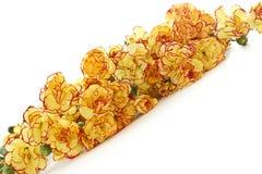 Fleurs d'oeillet Image libre de droits