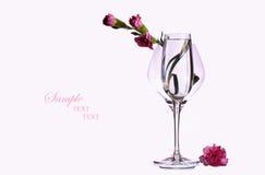 Fleurs d'oeillet dans le verre à vin Image libre de droits