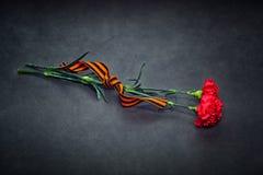 Fleurs d'oeillet et vue supérieure de George Ribbon Photo stock