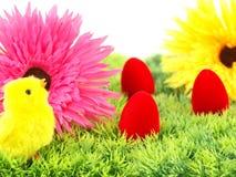 Fleurs d'oeufs de pâques et un poulet Photo stock