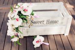 Fleurs d'orchidée dans le boîtier blanc Photo stock