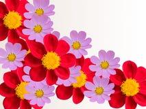 Fleurs d'un jardin le décoratif image libre de droits