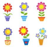 Fleurs dans des bacs Image stock