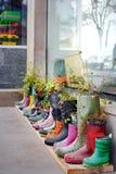 Fleurs dans des bottes en caoutchouc Photo libre de droits