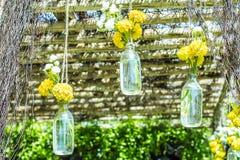 Fleurs dans des bouteilles Photo libre de droits