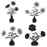 Fleurs dans des pots Image stock