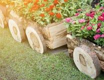 Fleurs dans des pots dans la boîte en bois sur le jardin Photo stock