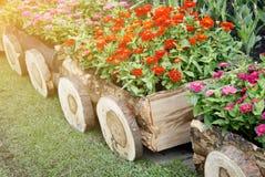Fleurs dans des pots dans la boîte en bois sur le jardin Photographie stock libre de droits