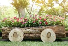 Fleurs dans des pots dans la boîte en bois sur le jardin Photos libres de droits