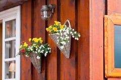 Fleurs dans des pots en osier sur une maison en bois islandaise Images stock