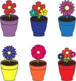 Fleurs dans des pots réglés Images stock