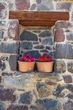 Fleurs dans des pots dans un mur en pierre Images stock