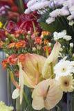 Fleurs dans des vases images libres de droits