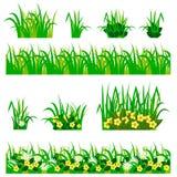 Fleurs dans l'ensemble d'herbe Image stock