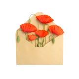 Fleurs dans l'enveloppe Image libre de droits