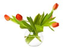 Fleurs dans la cuvette en verre Photos stock
