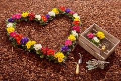 Fleurs dans la forme de coeur avec des outils de jardinage Images libres de droits