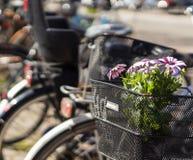 Fleurs dans la poubelle de bicyclette Image stock