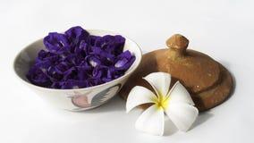 Fleurs dans la tasse images stock