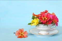 Fleurs dans la tasse Photos stock