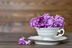 Fleurs dans la tasse de vintage Photo libre de droits