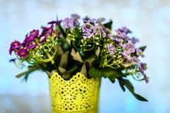 Fleurs dans la violette de pot Photographie stock libre de droits