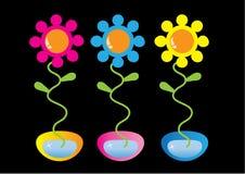 Fleurs dans le bac Photo stock