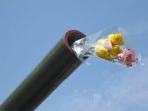 Fleurs dans le canon vert, signe de gloire de victoire Photo stock
