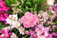 Fleurs dans le jardin images stock