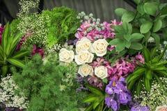 Fleurs dans le jardin photo stock