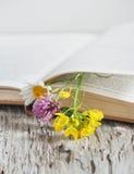 Fleurs dans le livre ouvert Photos stock
