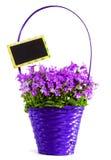 Fleurs dans le panier Images stock