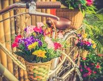 Fleurs dans le panier accrochant aux guidons de bicyclette Photos stock