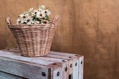 Fleurs dans le panier en osier Photographie stock libre de droits