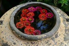 Fleurs dans le pot traditionnel Photo libre de droits