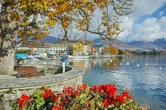 Fleurs dans le remblai de la ville de Vevey et de Lac Léman, Suisse Image libre de droits