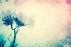 Fleurs dans le style de couleur de vintage sur la texture de papier de mûre Image stock
