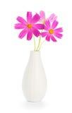 Fleurs dans le vase Image libre de droits
