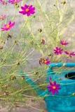 Fleurs dans un jardin avec la boîte de l'eau Image stock