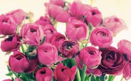 Fleurs dans un vase en verre Images libres de droits