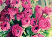 Fleurs dans un vase en verre Photographie stock