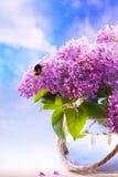 Fleurs dans un vase sur le fond de ciel Photos stock